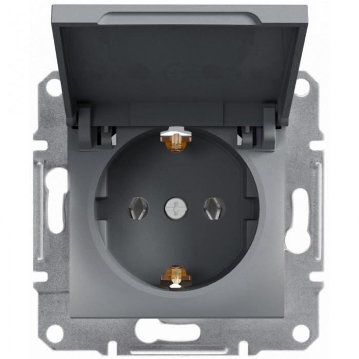 Розетка Schneider Electric Asfora із заземленням і кришкою Сталь (EPH3100162)