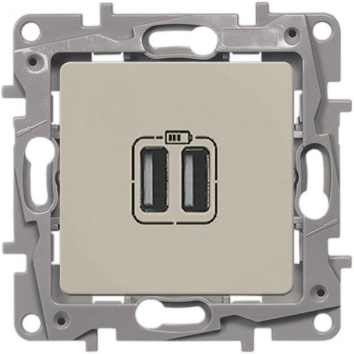USB-розетка подвійна Legrand Etika Слонова кістка (672394)